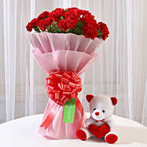 Teddy Bear & 20 Red Carnations Combo: Send Carnations