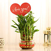 Three Layer Lucky Bamboo With I Love You Tag: Send Plants to Pune