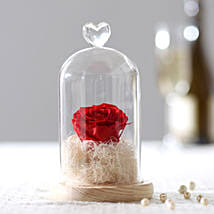 Timeless- Forever Red Rose In Glass Dome: Flower Delivery in Etah