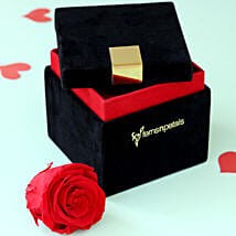 Timeless- Forever Red Rose in Velvet Box: Send Flowers to Panna