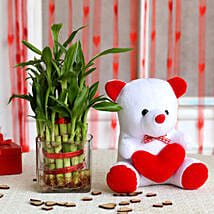 Two Layer Bamboo Plant & Red Heart Teddy Bear Combo: Send Plants for Anniversary