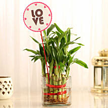 Two Layer Bamboo in Vase with Love Tag: Valentines Day Lucky Bamboo