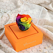 Rainbow Forever Rose In Orange Box: Send Flowers to Bulandshahr