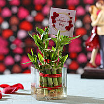 Valentine's Day Wishes Lucky Bamboo: Valentines Day Lucky Bamboo