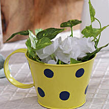 Yellow Polka Planter: Garden Tools and Accessories