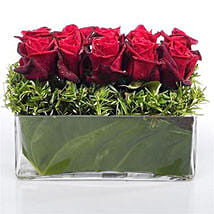 Heaven of Red Roses: Romantic Gifts to Nz