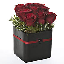 Pot Of Red Hot Roses: Congratulations Flowers to New Zealand