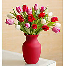 Assorted Tulips: Mothers Day Gifts to Philippines