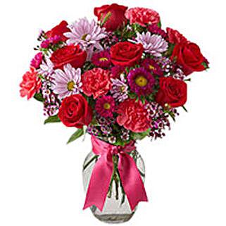 Paradise: Carnations