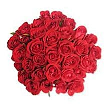 12 Red Roses in Cellophane SA: Corporate Gifts to South Africa