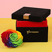 Forever Rainbow Rose in Black Velvet Box Big: Birthday Gift Delivery in South Africa
