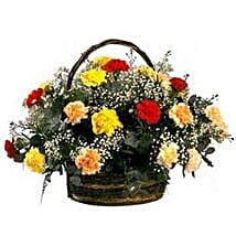 Rainbow Carnation Basket SA: Xmas Gift Delivery South Africa