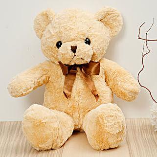 Light Brown Teddy Bear: Send Soft Toys to UAE