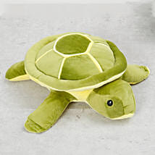 Turtle Soft Toy: Soft Toys to UAE
