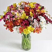 32 British Alstroemeria: Birthday Gifts Delivery in UK