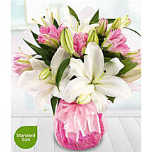 Lovely Lilies: Send Gifts to Manchester, UK