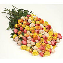 100 Long Stem Assorted Roses: Flowers to Ontario