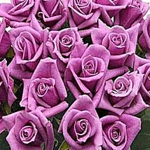 100 Long Stem Lavender Roses: Send Flowers to Denver