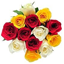 12 Mix Color Roses: Send Flowers to Ontario