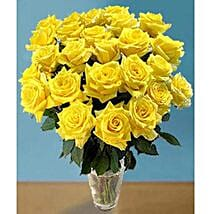25 Long Stem Yellow Roses: Send Flowers to Ontario
