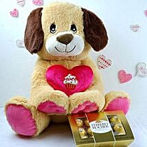 Adorable Puppy N Ferrero Chocolates: Gifts to Detroit
