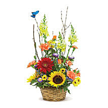 Butterfly Garden USA: Send Flowers to Denver
