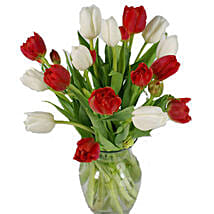 Christmas Mixed Tulips: Valentine's Day Flowers to USA