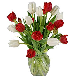 Christmas Mixed Tulips: Tulips to USA