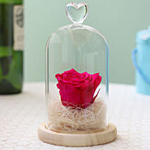 Forever Hot Pink Rose in Glass Dome: Roses