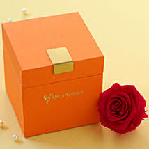 Hot Pink Forever Rose in Orange Box: Send Rose Day Gifts to USA
