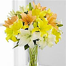 Simple Asiatic Lilies: Friendship Day Flowers to USA