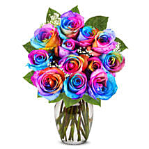 Two Dozen Wild Rainbow Roses: Mothers Day Flowers in USA